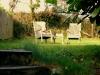 Wild Thyme Barn Garden