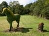 Grass Horse & Dog